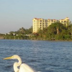 bayview 700 osceola condos for sale downtown clearwater