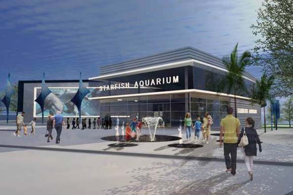 downtownclearwateraquarium2